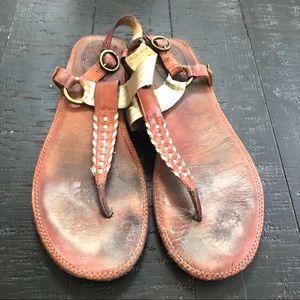 Frye brown leather thong strap Sz 11